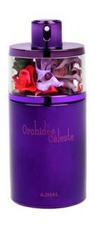 Orchidee Celeste